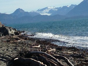 Looking across the Kachemak Bay
